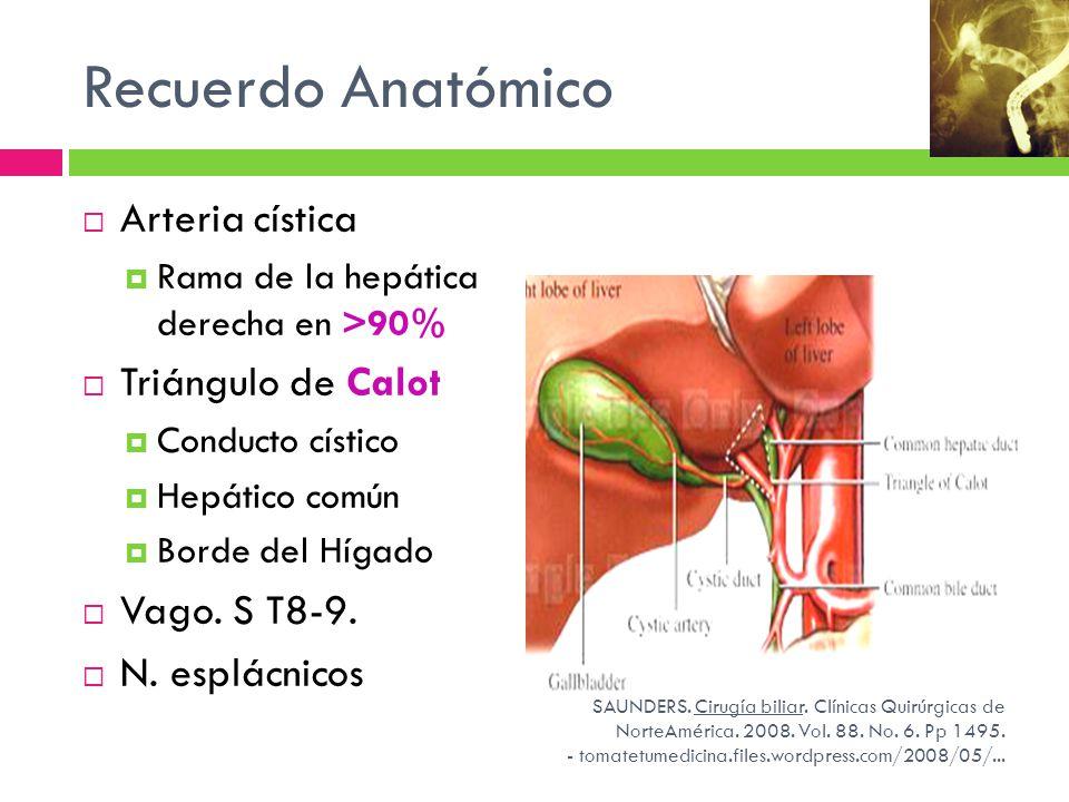 Recuerdo Anatómico Arteria cística Rama de la hepática derecha en >90% Triángulo de Calot Conducto cístico Hepático común Borde del Hígado Vago. S T8-