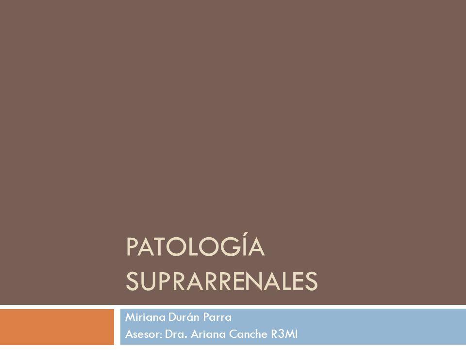PATOLOGÍA SUPRARRENALES Miriana Durán Parra Asesor: Dra. Ariana Canche R3MI