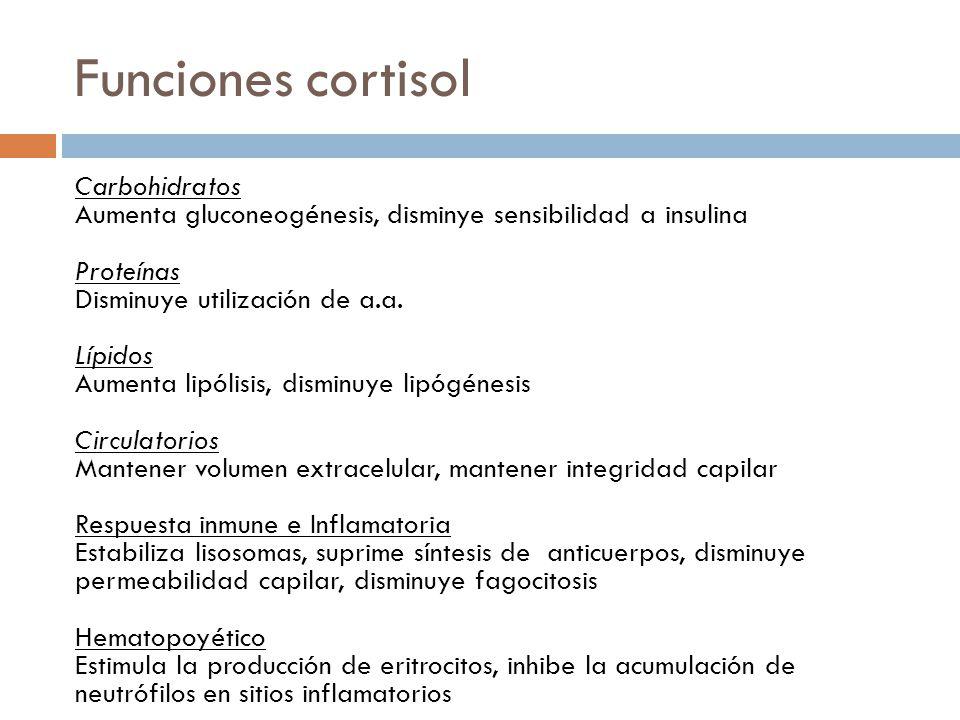 Funciones cortisol Carbohidratos Aumenta gluconeogénesis, disminye sensibilidad a insulina Proteínas Disminuye utilización de a.a. Lípidos Aumenta lip
