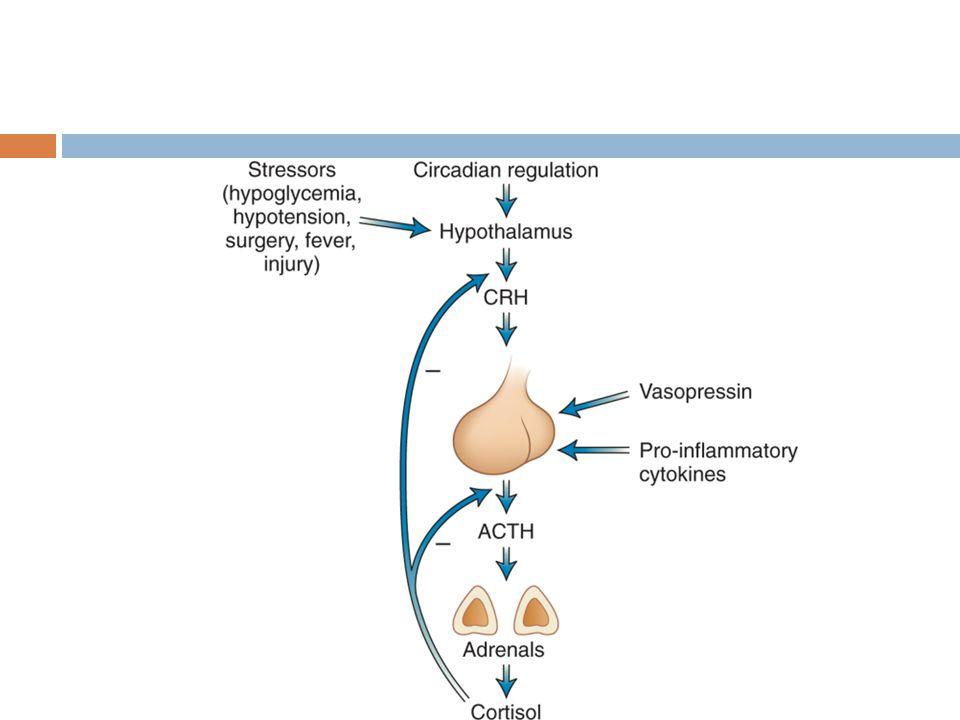 Insuficiencia suprarrenal Adrenalitis autoinmune 60-70% Tuberculosis SIDA Cancer metastásico Hemorragia suprarrenal (Waterhouse- Friederichsen) Medicamentos Congénitas
