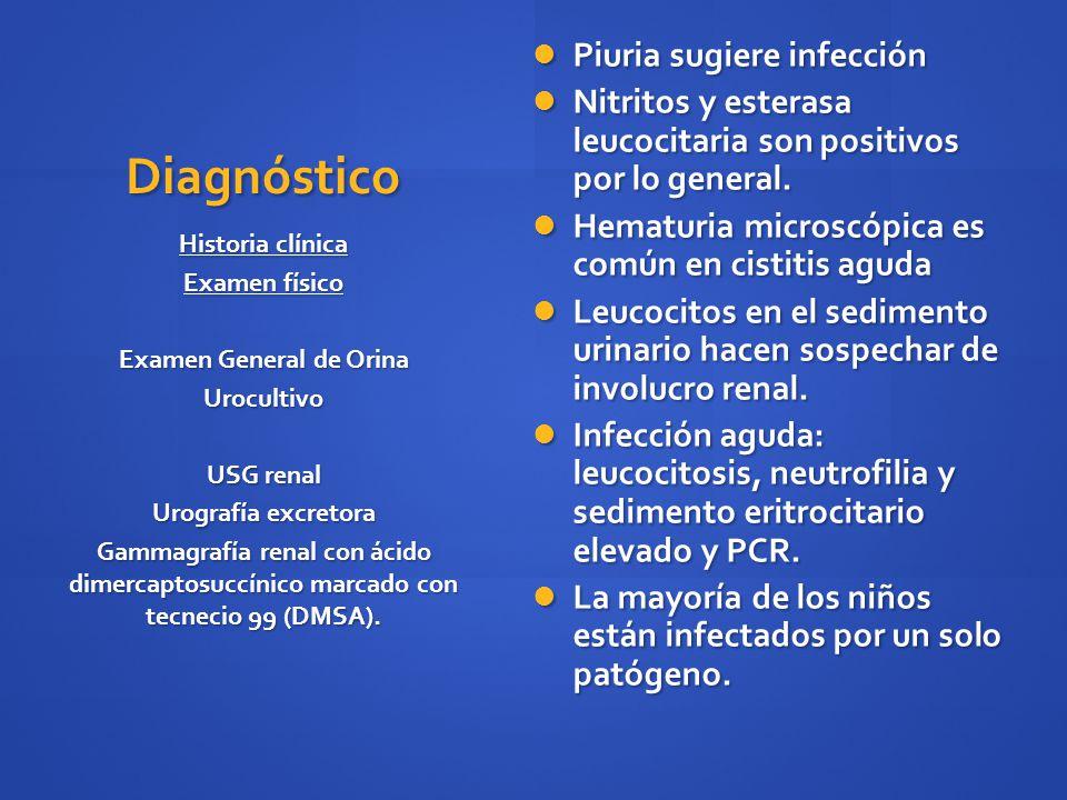 Diagnóstico Piuria sugiere infección Piuria sugiere infección Nitritos y esterasa leucocitaria son positivos por lo general. Nitritos y esterasa leuco
