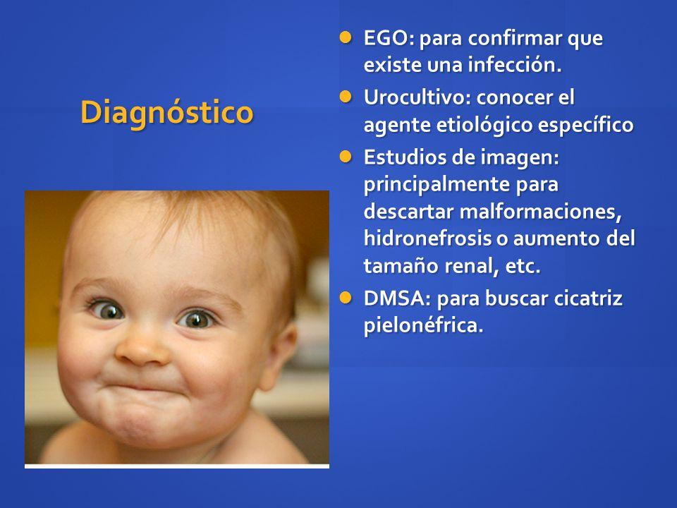 Diagnóstico EGO: para confirmar que existe una infección. EGO: para confirmar que existe una infección. Urocultivo: conocer el agente etiológico espec