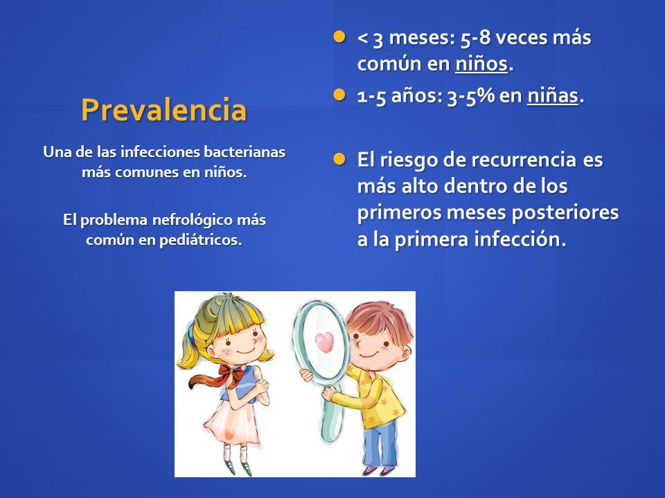 Prevalencia < 3 meses: 5-8 veces más común en niños. < 3 meses: 5-8 veces más común en niños. 1-5 años: 3-5% en niñas. 1-5 años: 3-5% en niñas. El rie