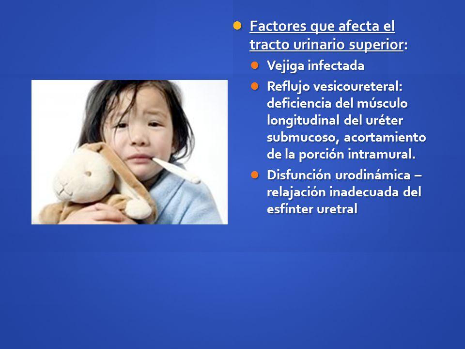 Manifestaciones clínicas Pielonefritis: Pielonefritis: Dolor abdominal o en fosa renal, fiebre, malestar general, nausea, vómito, diarrea.