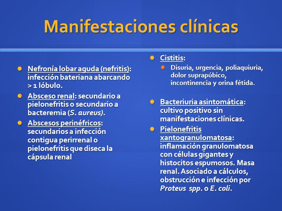 Diagnóstico diferencial Uretritis, vaginitis, cervicitis, prostatitis, cuerpo extraño, nefrolitiasis, absceso renal, fístula vaginovesical o fístula enterovesical.