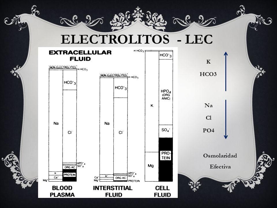 ELECTROLITOS - LEC Na Cl PO4 K HCO3 Osmolaridad Efectiva