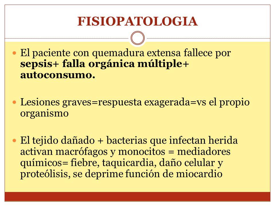 FISIOPATOLOGIA El paciente con quemadura extensa fallece por sepsis+ falla orgánica múltiple+ autoconsumo. Lesiones graves=respuesta exagerada=vs el p