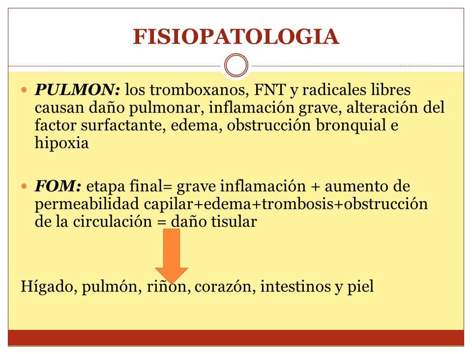 FISIOPATOLOGIA PULMON: los tromboxanos, FNT y radicales libres causan daño pulmonar, inflamación grave, alteración del factor surfactante, edema, obstrucción bronquial e hipoxia FOM: etapa final= grave inflamación + aumento de permeabilidad capilar+edema+trombosis+obstrucción de la circulación = daño tisular Hígado, pulmón, riñón, corazón, intestinos y piel
