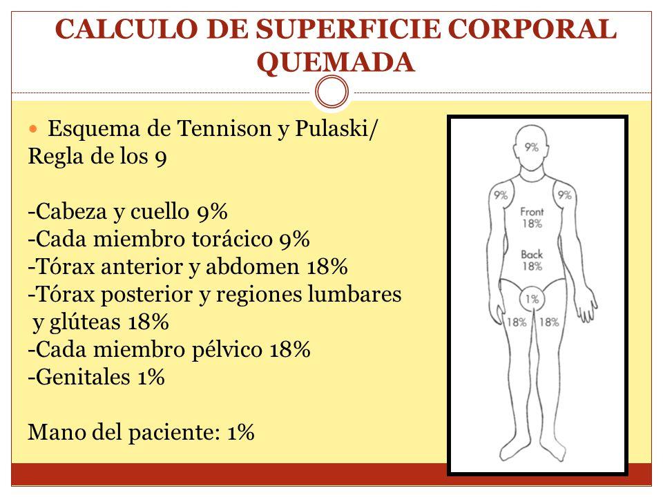 CALCULO DE SUPERFICIE CORPORAL QUEMADA Esquema de Tennison y Pulaski/ Regla de los 9 -Cabeza y cuello 9% -Cada miembro torácico 9% -Tórax anterior y a