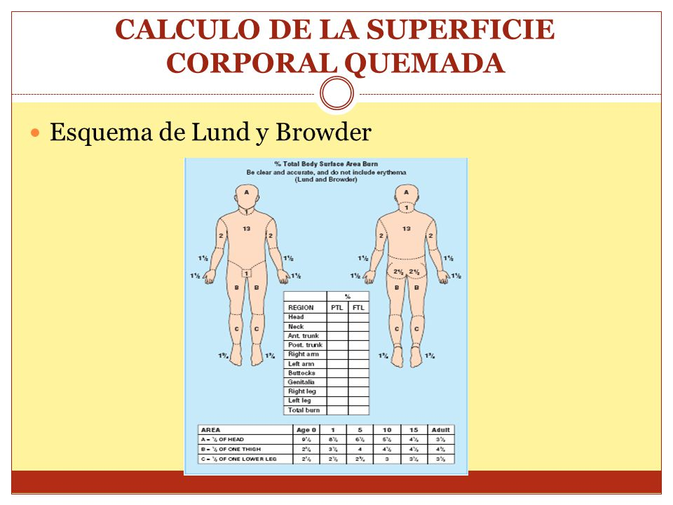 CALCULO DE LA SUPERFICIE CORPORAL QUEMADA Esquema de Lund y Browder