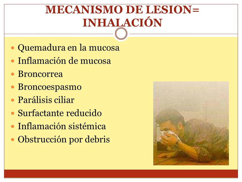 MECANISMO DE LESION= INHALACIÓN Quemadura en la mucosa Inflamación de mucosa Broncorrea Broncoespasmo Parálisis ciliar Surfactante reducido Inflamació