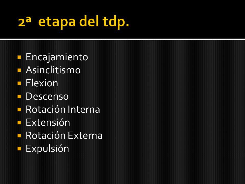 Encajamiento Asinclitismo Flexion Descenso Rotación Interna Extensión Rotación Externa Expulsión