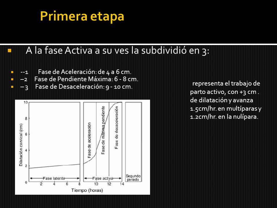 A la fase Activa a su ves la subdividió en 3: --1 Fase de Aceleración: de 4 a 6 cm. –2 Fase de Pendiente Máxima: 6 - 8 cm. – 3 Fase de Desaceleración: