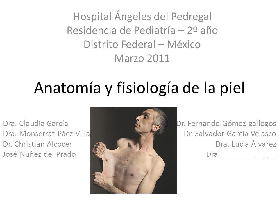Anatomía y fisiología de la piel Dra. Claudia García Dra. Monserrat Páez Villa Dr. Christian Alcocer José Nuñez del Prado Dr. Fernando Gómez gallegos