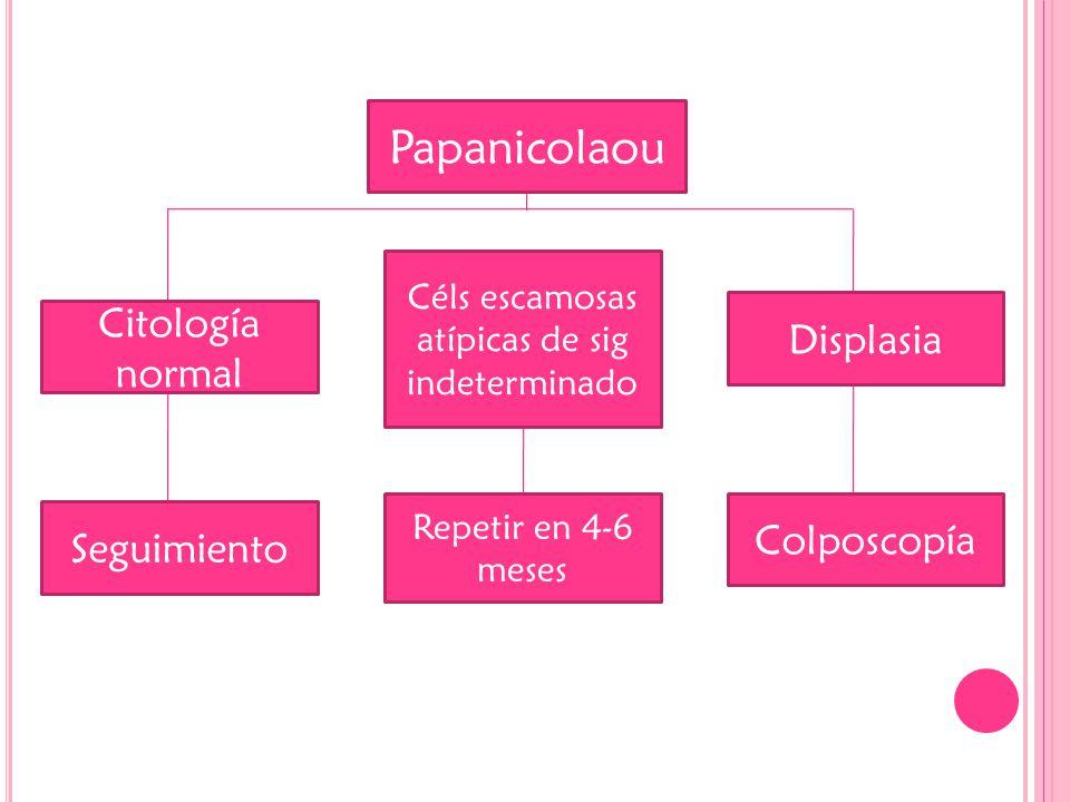 Papanicolaou Citología normal Displasia Seguimiento Colposcopía Céls escamosas atípicas de sig indeterminado Repetir en 4-6 meses