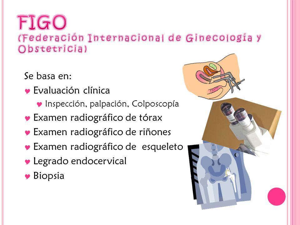 Se basa en: Evaluación clínica Inspección, palpación, Colposcopía Examen radiográfico de tórax Examen radiográfico de riñones Examen radiográfico de esqueleto Legrado endocervical Biopsia
