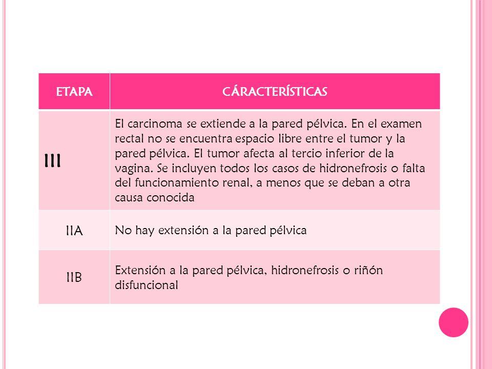 ETAPACÁRACTERÍSTICAS III El carcinoma se extiende a la pared pélvica. En el examen rectal no se encuentra espacio libre entre el tumor y la pared pélv