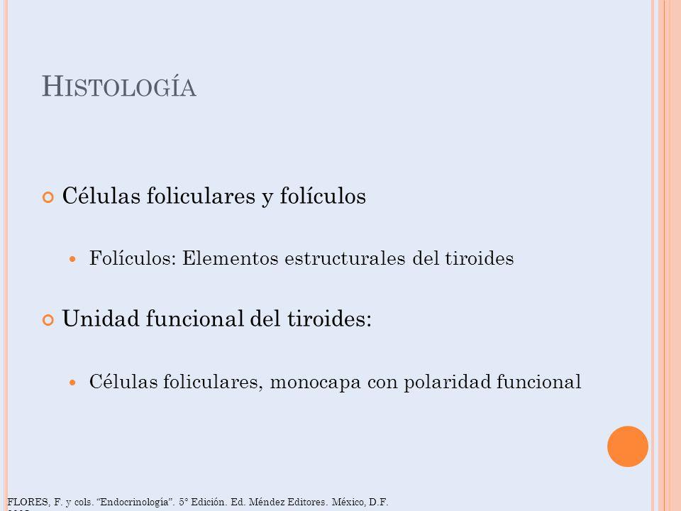 H ISTOLOGÍA Células foliculares y folículos Folículos: Elementos estructurales del tiroides Unidad funcional del tiroides: Células foliculares, monoca