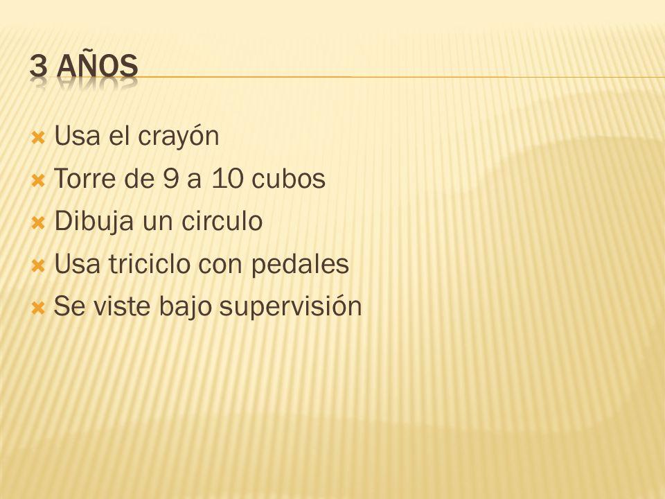 Usa el crayón Torre de 9 a 10 cubos Dibuja un circulo Usa triciclo con pedales Se viste bajo supervisión