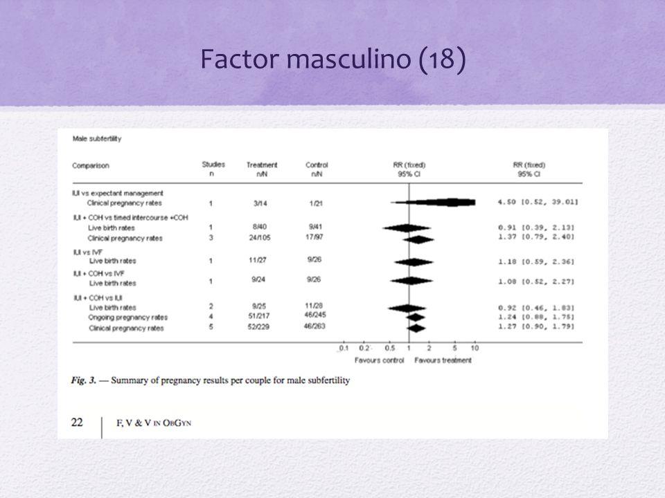 Factor masculino (18)