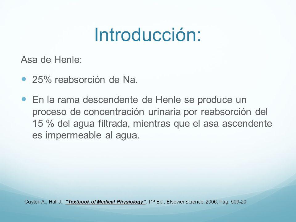 Introducción: Asa de Henle: 25% reabsorción de Na. En la rama descendente de Henle se produce un proceso de concentración urinaria por reabsorción del