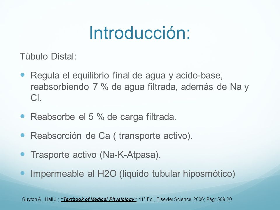 Introducción: Túbulo Distal: Regula el equilibrio final de agua y acido-base, reabsorbiendo 7 % de agua filtrada, además de Na y Cl.