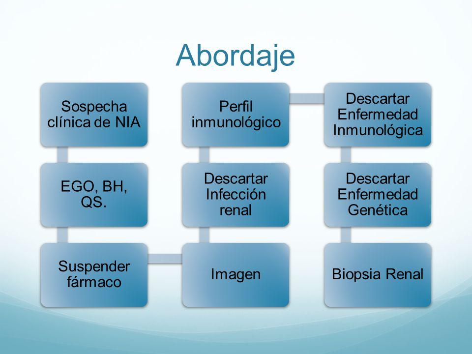 Abordaje Sospecha clínica de NIA EGO, BH, QS. Suspender fármaco Imagen Descartar Infección renal Perfil inmunológico Descartar Enfermedad Inmunológica