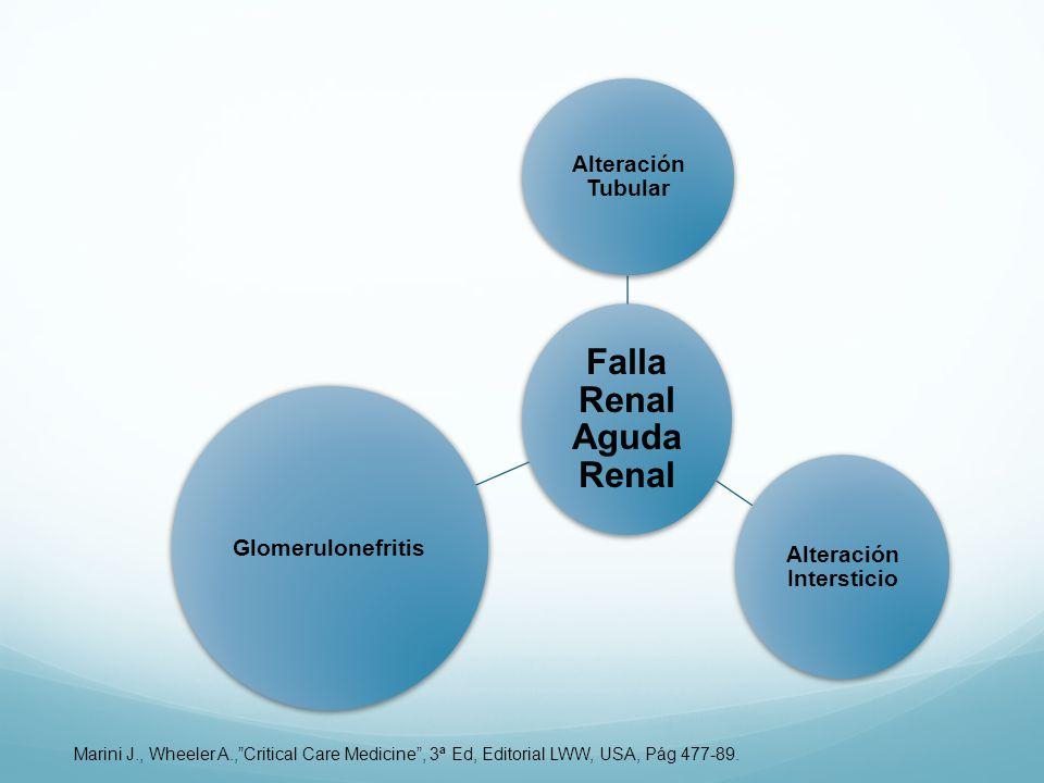 Falla Renal Aguda Renal Alteración Tubular Alteración Intersticio Glomerulonefritis Marini J., Wheeler A.,Critical Care Medicine, 3ª Ed, Editorial LWW, USA, Pág 477-89.