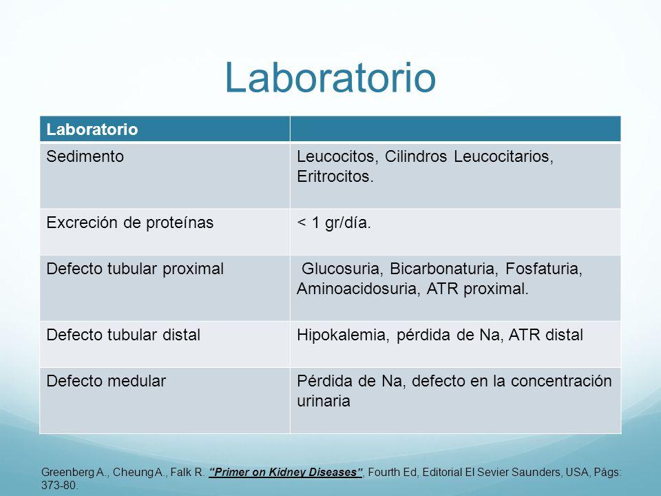 Laboratorio SedimentoLeucocitos, Cilindros Leucocitarios, Eritrocitos.