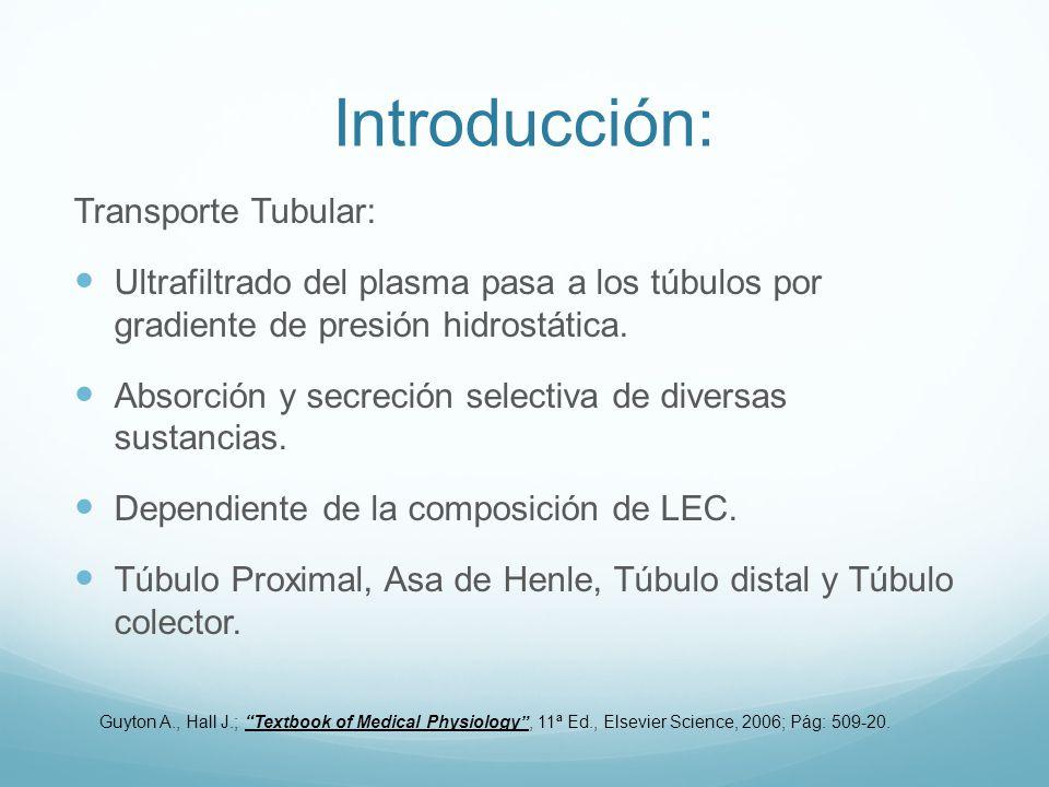Introducción: Transporte Tubular: Ultrafiltrado del plasma pasa a los túbulos por gradiente de presión hidrostática. Absorción y secreción selectiva d