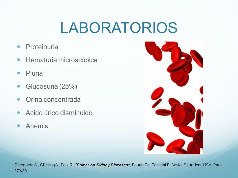 LABORATORIOS Proteinuria Hematuria microscópica Piuria Glucosuria (25%) Orina concentrada Ácido úrico disminuido Anemia Greenberg A., Cheung A., Falk