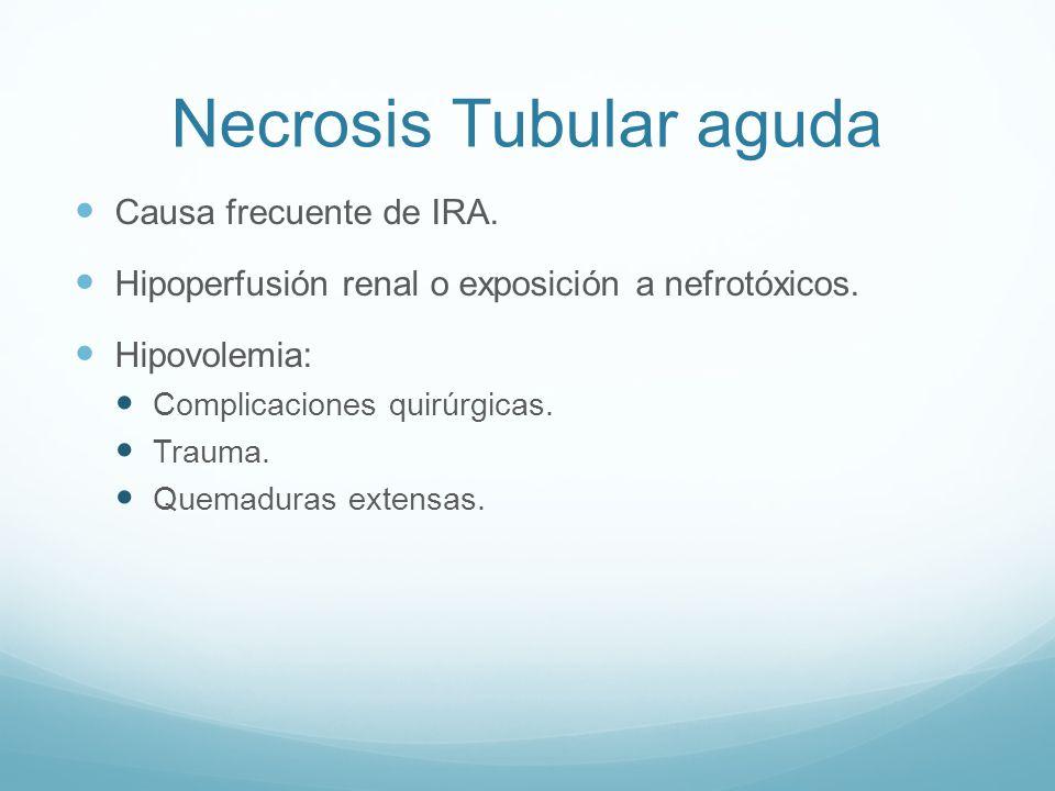 Necrosis Tubular aguda Causa frecuente de IRA. Hipoperfusión renal o exposición a nefrotóxicos. Hipovolemia: Complicaciones quirúrgicas. Trauma. Quema
