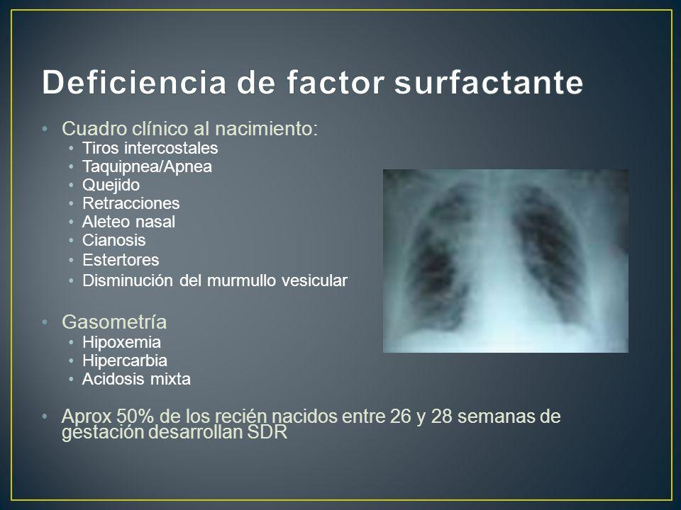 Cuadro clínico al nacimiento: Tiros intercostales Taquipnea/Apnea Quejido Retracciones Aleteo nasal Cianosis Estertores Disminución del murmullo vesic