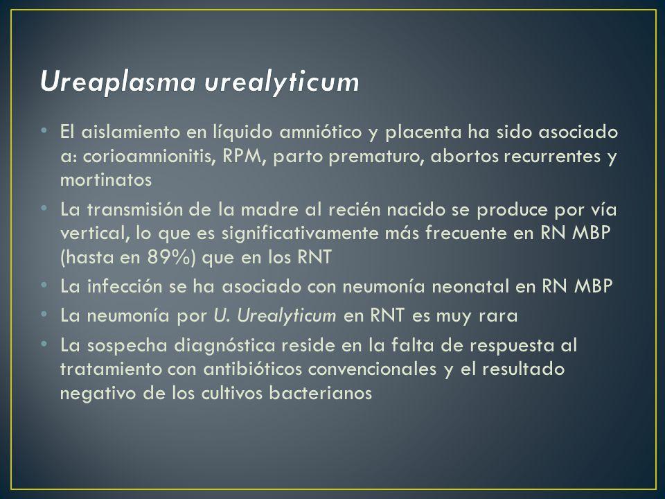 El aislamiento en líquido amniótico y placenta ha sido asociado a: corioamnionitis, RPM, parto prematuro, abortos recurrentes y mortinatos La transmisión de la madre al recién nacido se produce por vía vertical, lo que es significativamente más frecuente en RN MBP (hasta en 89%) que en los RNT La infección se ha asociado con neumonía neonatal en RN MBP La neumonía por U.