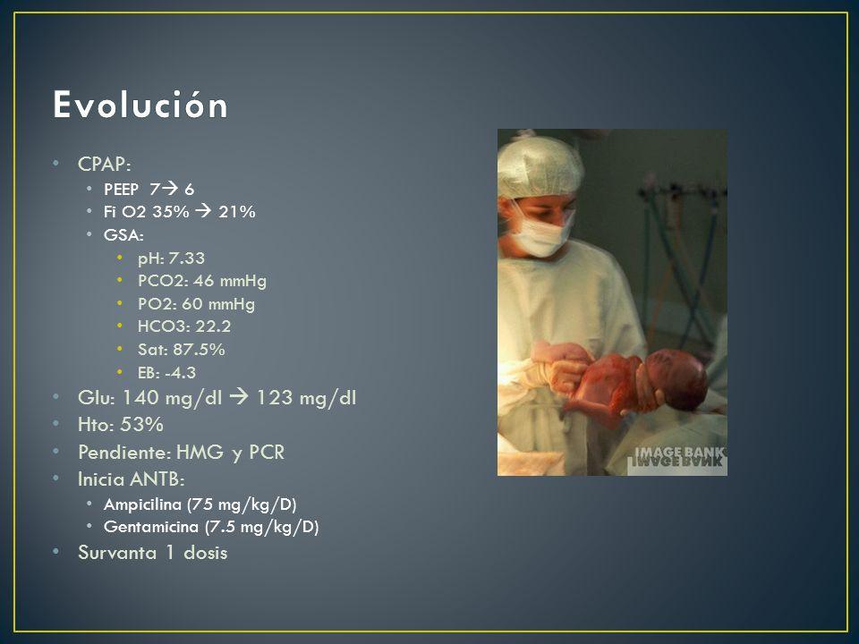 CPAP: PEEP 7 6 Fi O2 35% 21% GSA: pH: 7.33 PCO2: 46 mmHg PO2: 60 mmHg HCO3: 22.2 Sat: 87.5% EB: -4.3 Glu: 140 mg/dl 123 mg/dl Hto: 53% Pendiente: HMG