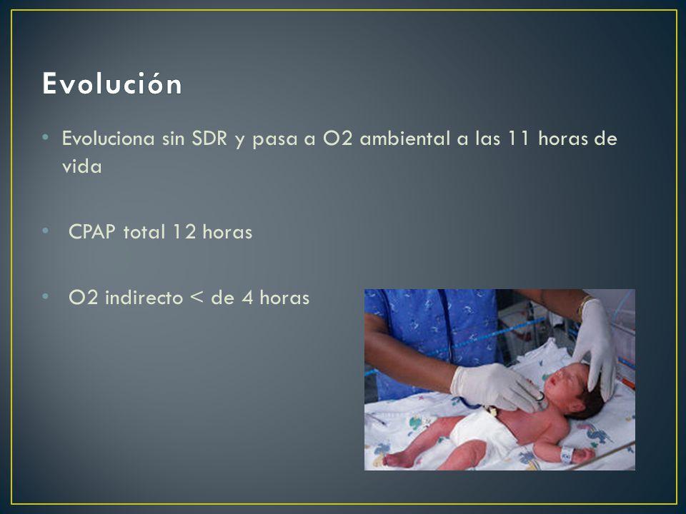 Evoluciona sin SDR y pasa a O2 ambiental a las 11 horas de vida CPAP total 12 horas O2 indirecto < de 4 horas