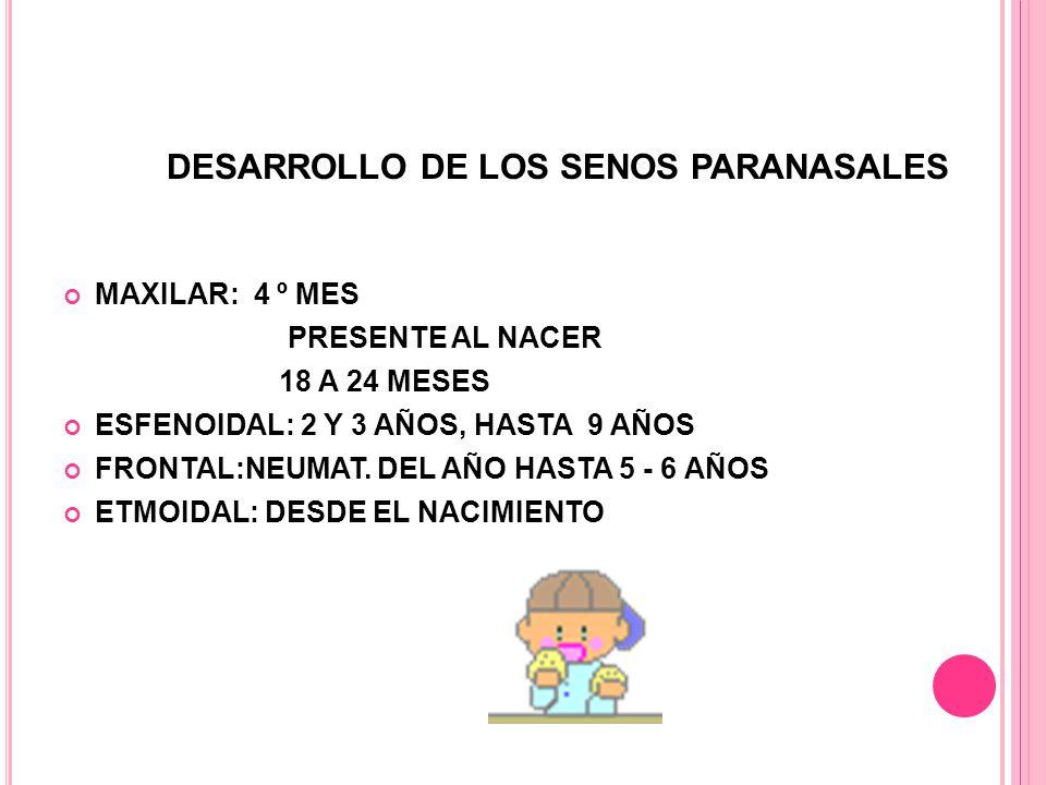 DESARROLLO DE LOS SENOS PARANASALES MAXILAR: 4 º MES PRESENTE AL NACER 18 A 24 MESES ESFENOIDAL: 2 Y 3 AÑOS, HASTA 9 AÑOS FRONTAL:NEUMAT.