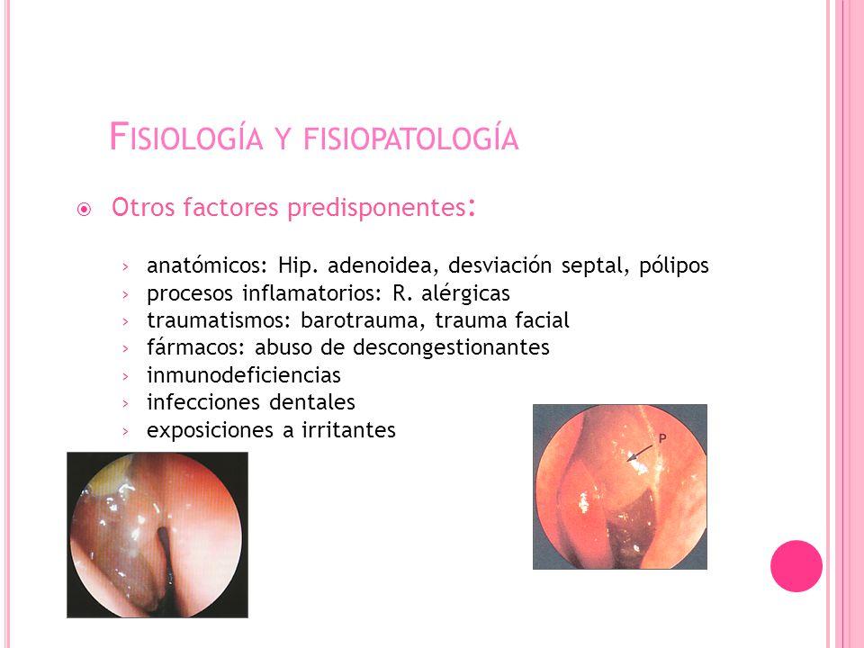 F ISIOLOGÍA Y FISIOPATOLOGÍA Otros factores predisponentes : anatómicos: Hip.