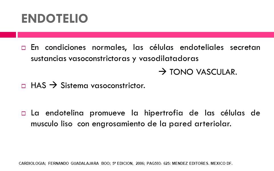 ENDOTELIO En condiciones normales, las células endoteliales secretan sustancias vasoconstrictoras y vasodilatadoras TONO VASCULAR. HAS Sistema vasocon