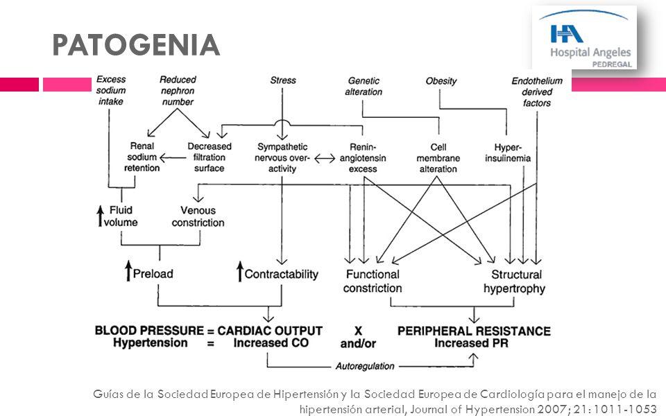 PATOGENIA Guías de la Sociedad Europea de Hipertensión y la Sociedad Europea de Cardiología para el manejo de la hipertensión arterial, Journal of Hyp