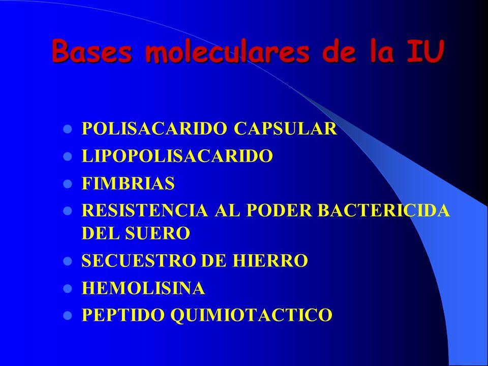 Bases moleculares de la IU POLISACARIDO CAPSULAR LIPOPOLISACARIDO FIMBRIAS RESISTENCIA AL PODER BACTERICIDA DEL SUERO SECUESTRO DE HIERRO HEMOLISINA P
