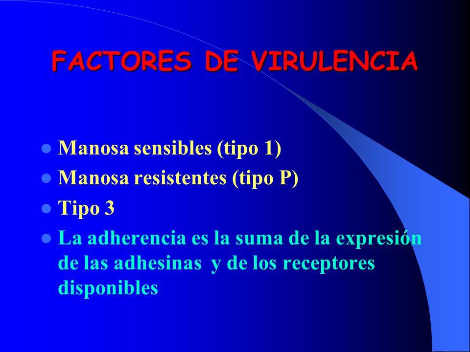 FACTORES DE VIRULENCIA Manosa sensibles (tipo 1) Manosa resistentes (tipo P) Tipo 3 La adherencia es la suma de la expresión de las adhesinas y de los
