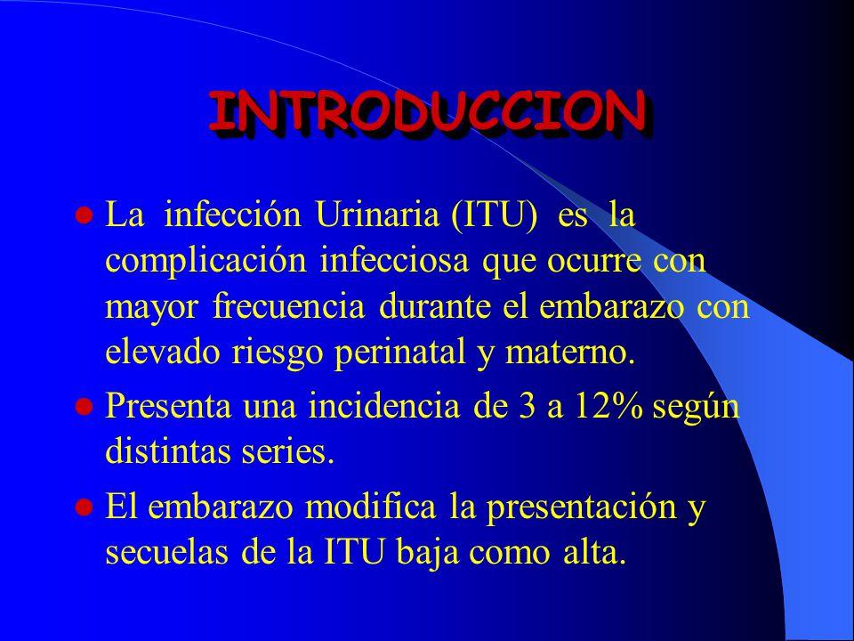 La infección Urinaria (ITU) es la complicación infecciosa que ocurre con mayor frecuencia durante el embarazo con elevado riesgo perinatal y materno.