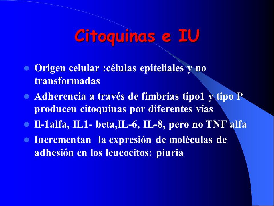 Citoquinas e IU Origen celular :células epiteliales y no transformadas Adherencia a través de fimbrias tipo1 y tipo P producen citoquinas por diferent