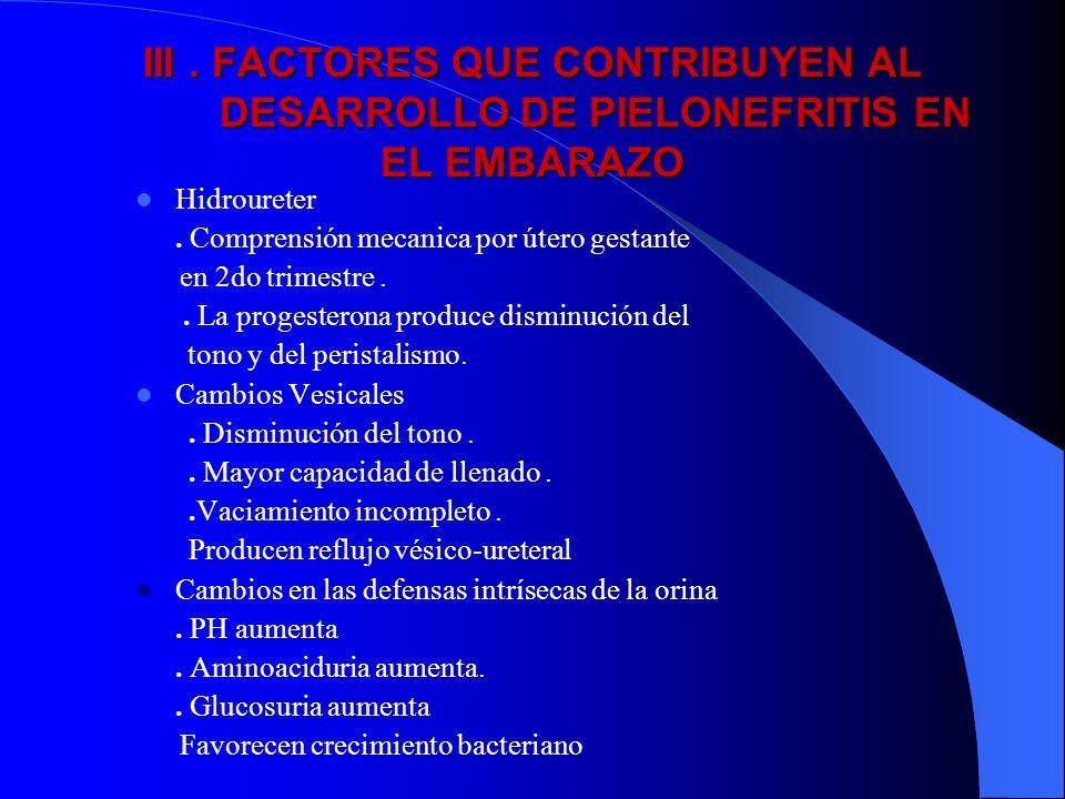 III. FACTORES QUE CONTRIBUYEN AL DESARROLLO DE PIELONEFRITIS EN EL EMBARAZO Hidroureter. Comprensión mecanica por útero gestante en 2do trimestre.. La