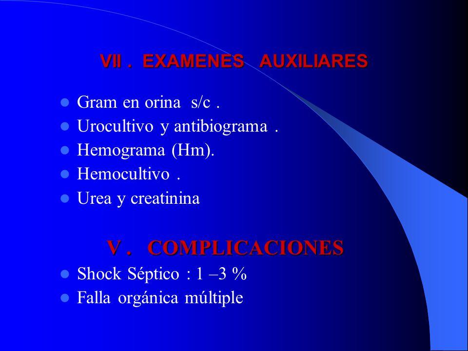 VII. EXAMENES AUXILIARES Gram en orina s/c. Urocultivo y antibiograma. Hemograma (Hm). Hemocultivo. Urea y creatinina V. COMPLICACIONES Shock Séptico