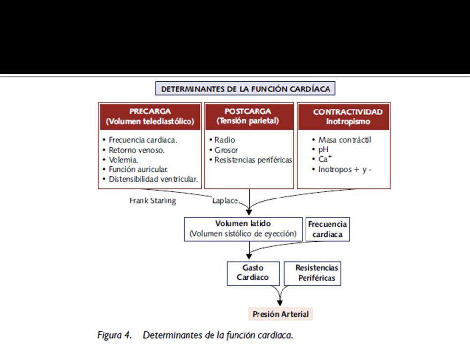 IC Sistólica y Diastólica Características de los pacientes con IC Sistólica y Diastólica CaracterísticaIC DiastólicaIC Sistólica EdadFrecuentemente viejos Todas las edades, 50 – 70 a SexoFrecuentemente Mujeres Frecuentemente Hombres FEVIConservada o normal, aprox 40% o más Disminuida, aprox 40% o menos Tamaño de la cavidad VI Normal, frecuente hipertrofia concéntrica del VI Usualmente dilatada RX TóraxCongestión c/s cardiomegalia Congestión y Cardiomegalia Ritmo de galopeS4S3 Rodríguez, Aldamiz-Echeverría, Pereira, Caeiro.