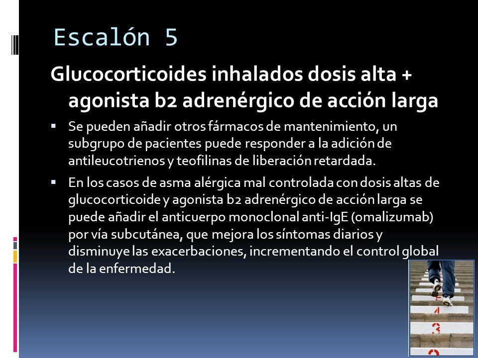 Escalón 5 Glucocorticoides inhalados dosis alta + agonista b2 adrenérgico de acción larga Se pueden añadir otros fármacos de mantenimiento, un subgrupo de pacientes puede responder a la adición de antileucotrienos y teofilinas de liberación retardada.