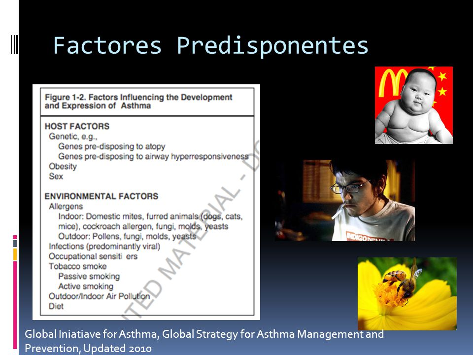 Factores Predisponentes Global Iniatiave for Asthma, Global Strategy for Asthma Management and Prevention, Updated 2010