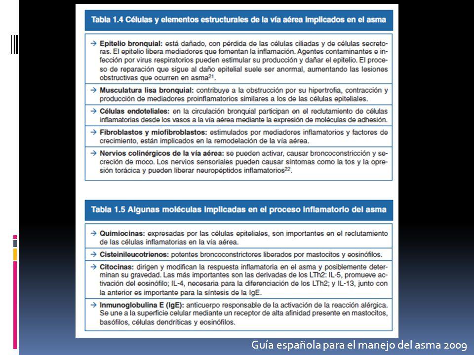 Guía española para el manejo del asma 2009
